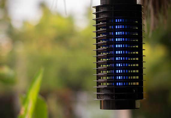 Flowtron Electronic Insect Killer Review